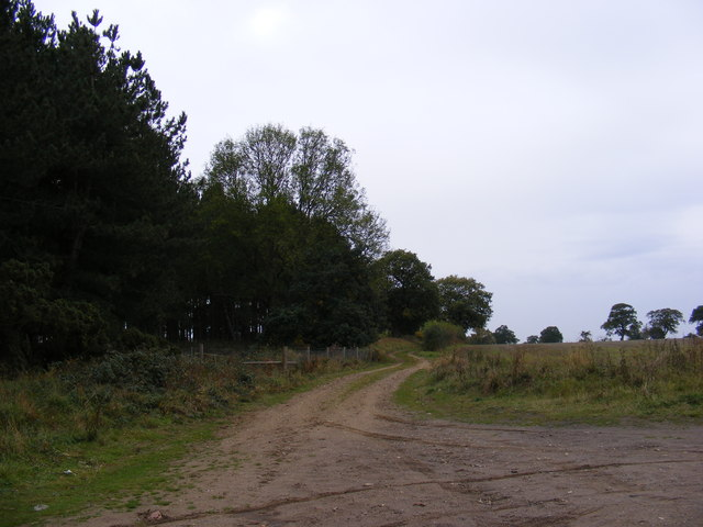 Footpath to B1078 at Tunstall