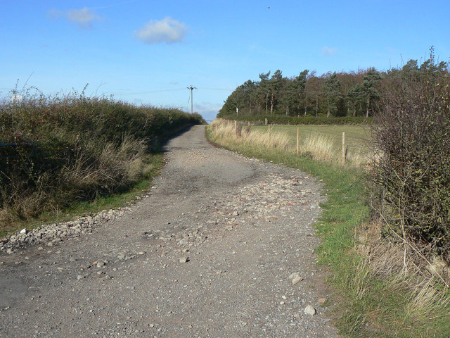 Wolds Lane