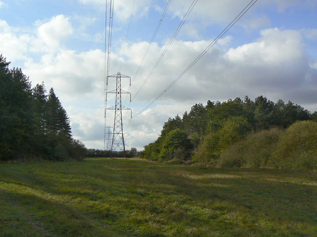 Power lines through the Forest