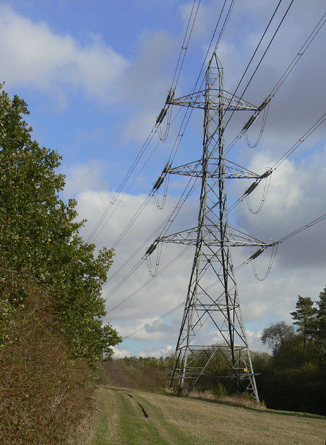 Pylon in the forest