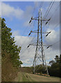 SK6432 : Pylon in the forest by Alan Murray-Rust