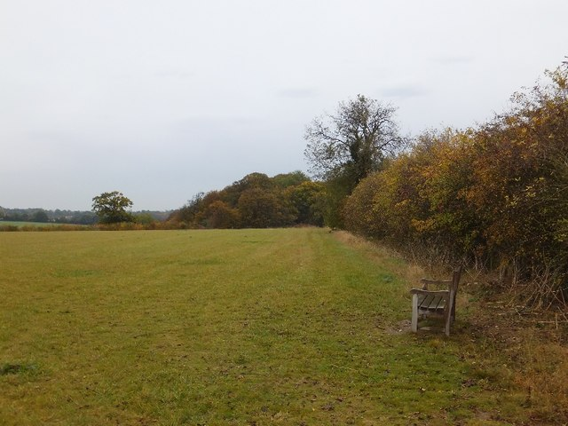 Hedge and a seat for walkers