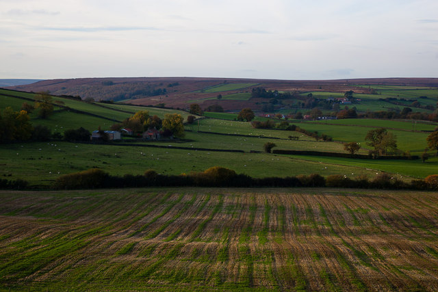 Greening stubble field near Castle Houses