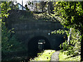 SJ9392 : Peak Forest Canal, Entrance To Woodley Tunnel by David Dixon