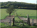 TQ3555 : Public footpath near Woldingham by Malc McDonald