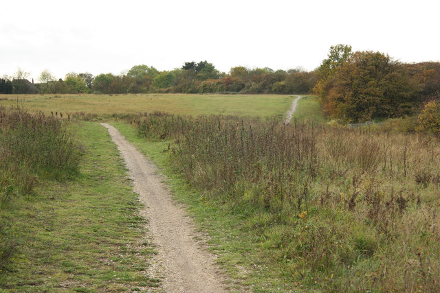 Beacon Hill Conservation Park