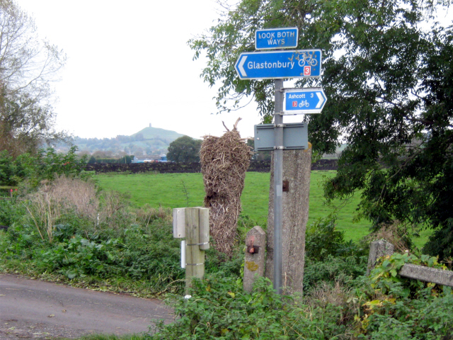 Sharpham Crossing, cycle route to Glastonbury