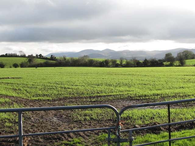 Cropland east of Drumgreenagh Road