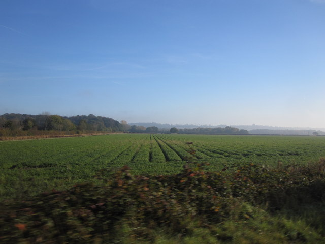 Farmland opposite Burton Waters