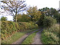 TM4379 : Track near Church Farm Bungalow by Adrian Cable