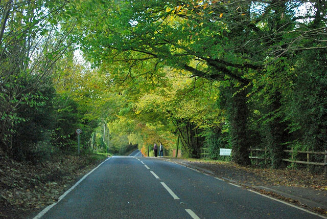 Boxhill Road