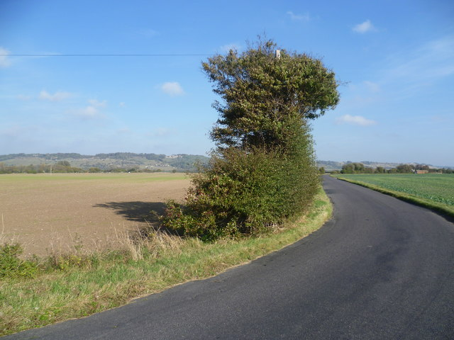 Donkey Street, Romney Marsh and the old cliff line