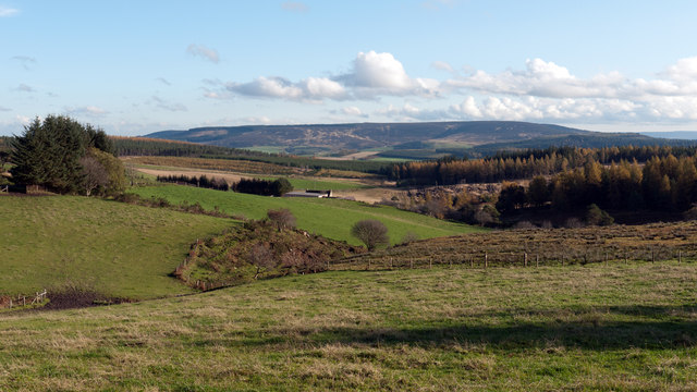 Fields south of Forkins Wood