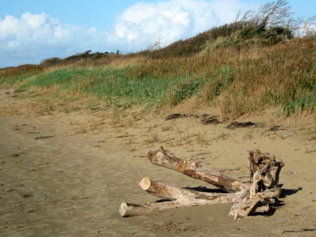 Burnham Beach and dunes