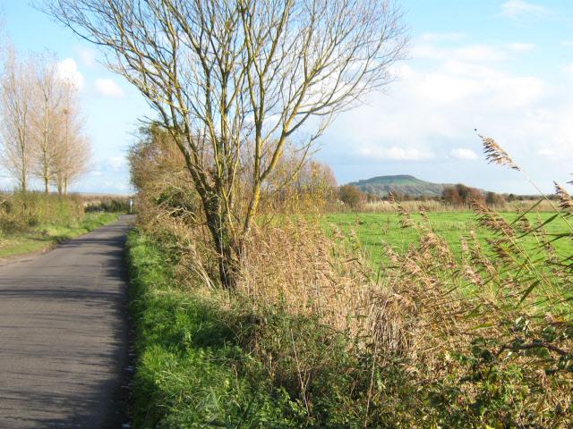 Hurn Lane, Berrow