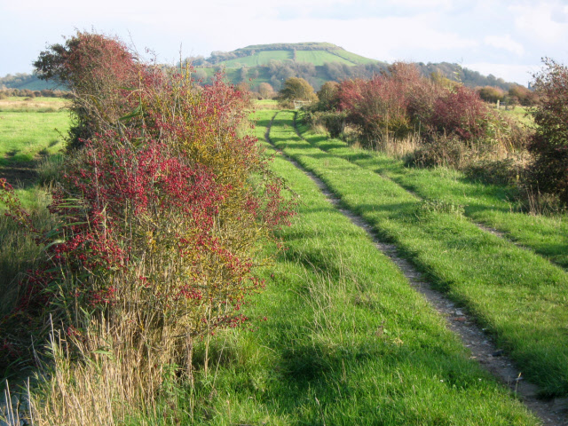 Track on Ford Common, Berrow