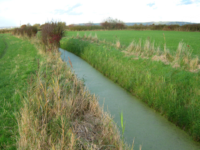 Drainage ditch, fields near Burnham