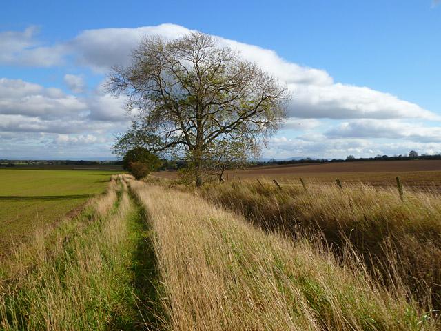 Farmland, Barton