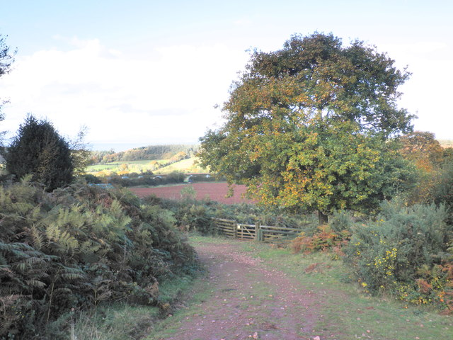 Looking down towards Gupworthy Farm