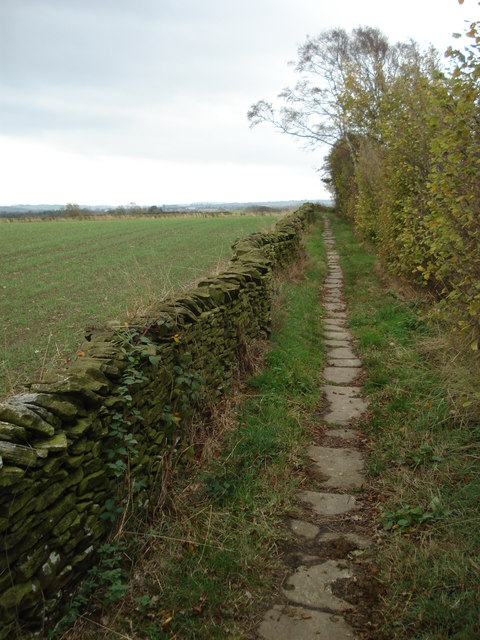 Folly Lane path