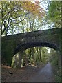 SX5260 : Bridge over the Plym Valley Trail by Derek Harper