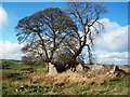 SK2459 : Ruined Field Barn near Winstermoor Farm by Jonathan Clitheroe