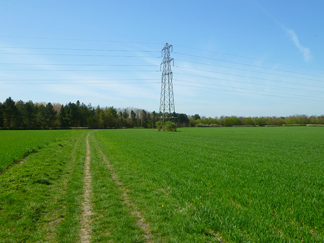 Farmland, East Hendred