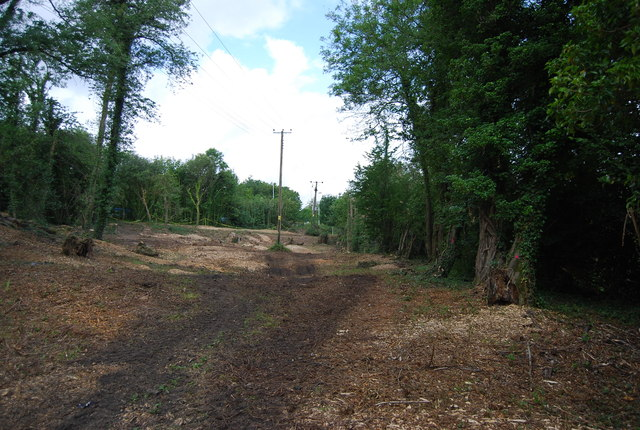 Cleared area, Monarch's Way