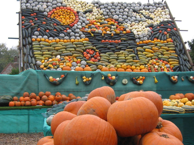 Gourds and Pumpkin Display