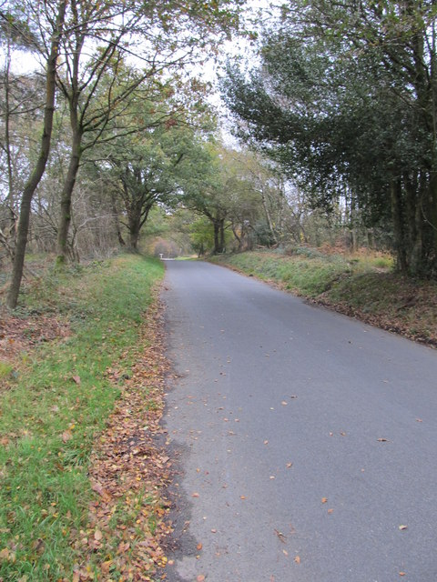 Twyford Lane as it approached T junction with Hindleap Lane