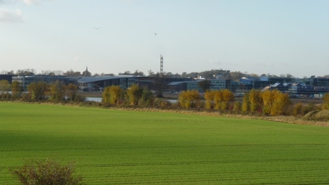 Towards Low Lane and Heslington East