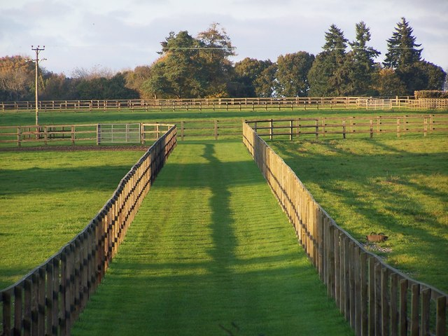 Paddock fences and shadows, West Tytherley
