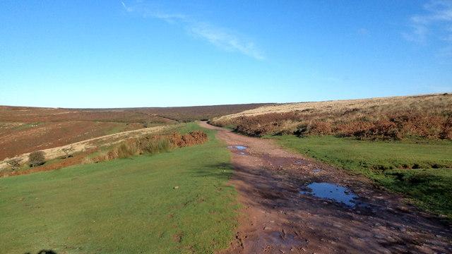 Quantock Ridgeway