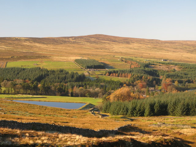 Pastures, Eastend Reservoir and plantations above Allenheads (2)