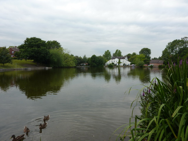 Madeley Pool