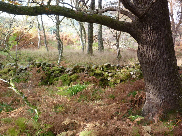Old wall in the Fairy Glen