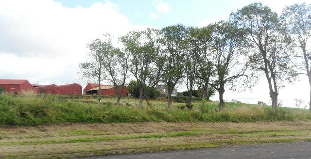 Red barns, Westwood, Gauls