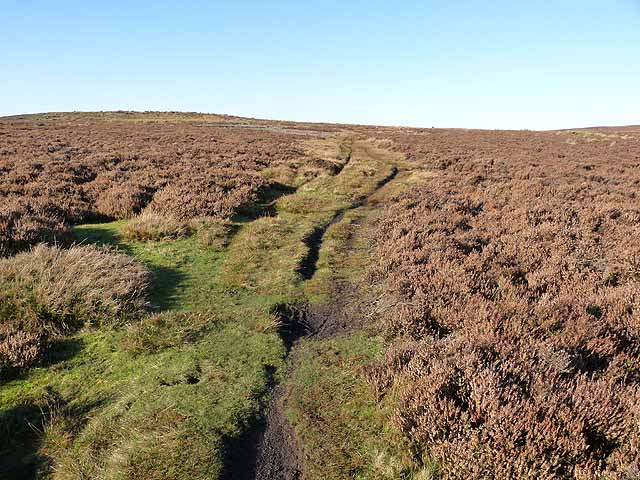 Bridleway on Birkside Moor