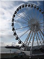 TQ3103 : Brighton Wheel and the Palace Pier by don cload
