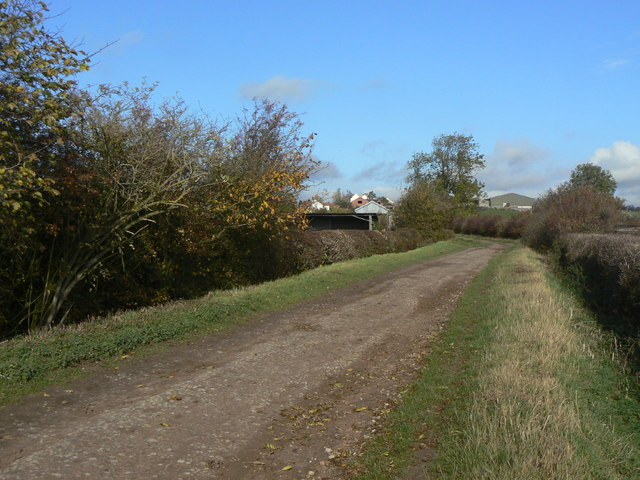 Lings Lane