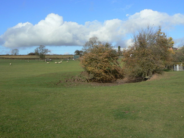 Marl pond off Lings Lane