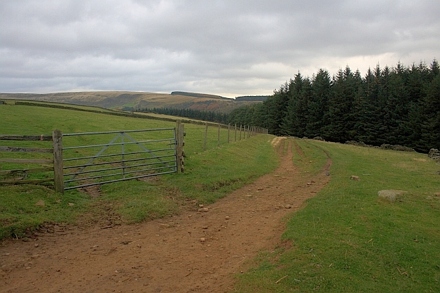 Public Bridleway to Haggwater Bridge