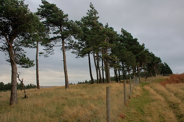 View up to Wooler Knoll
