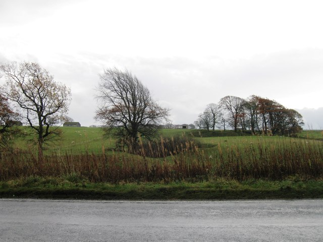 Fields south east of A701