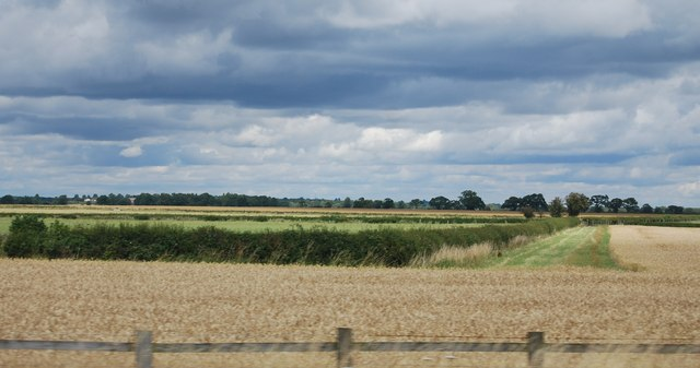 Hedge and farmland by the M40
