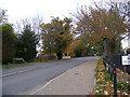 TM2899 : B1332 Norwich Road, Brooke by Adrian Cable