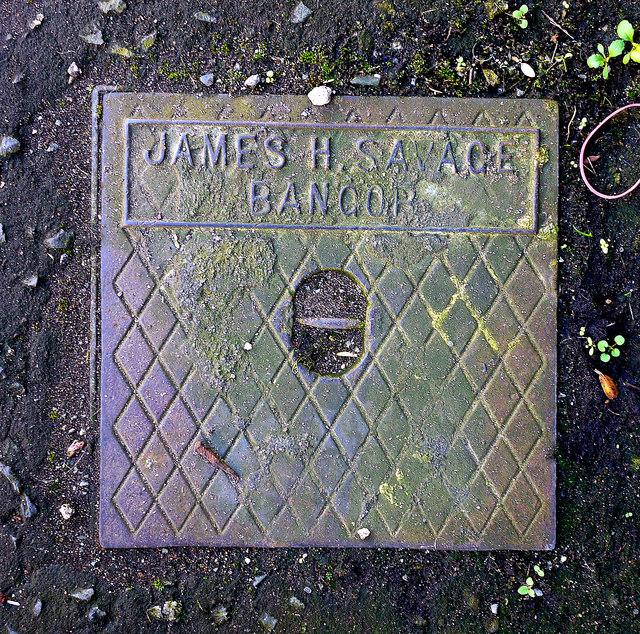 Drain cover, Bangor