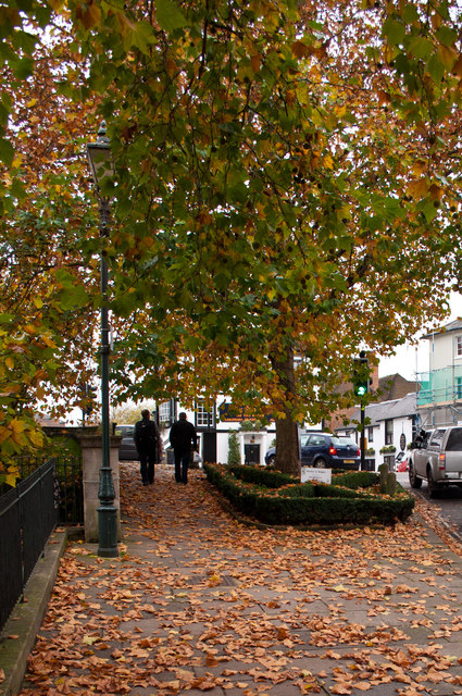 Autumn leaves on Thameside