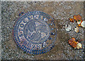 TQ0880 : Bespoke Manhole Cover by Des Blenkinsopp