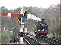 TQ4023 : Bluebell Railway: Sheffield Park : Week 45